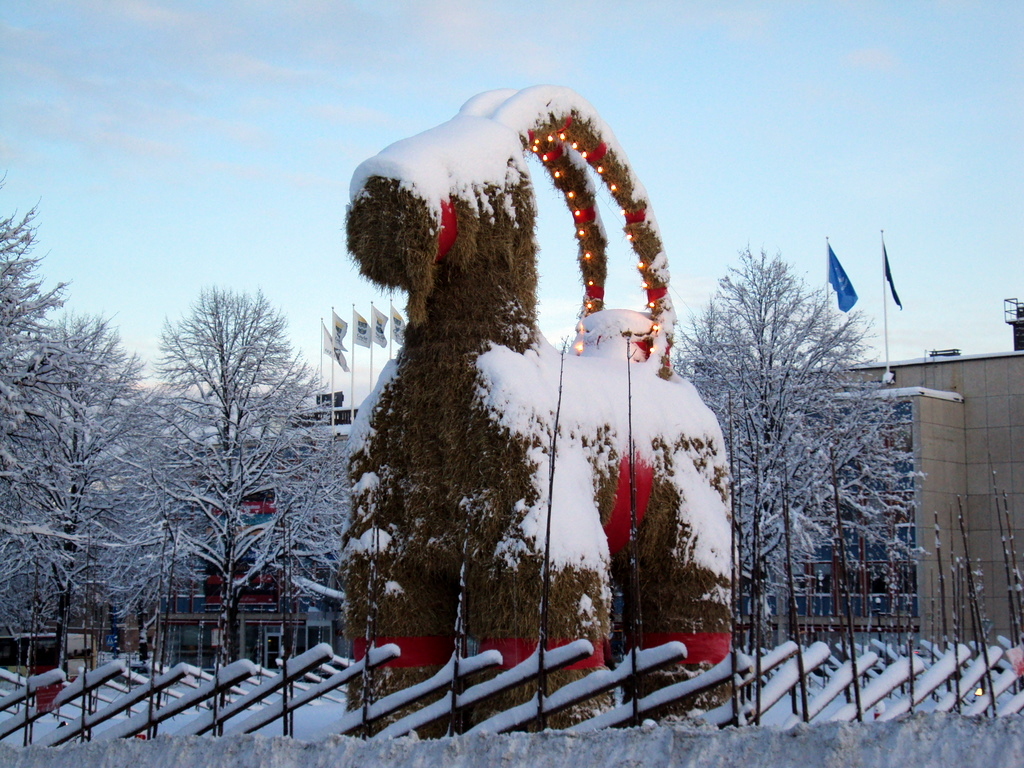 Koza z Gävle