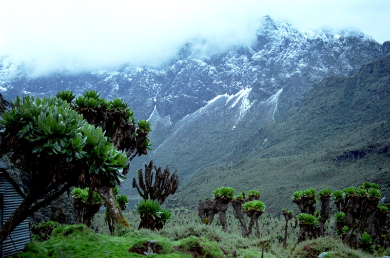 List of top highest mountains in africa fortune of africa list of top highest mountains in africa fortune of africa investment in africa publicscrutiny Image collections
