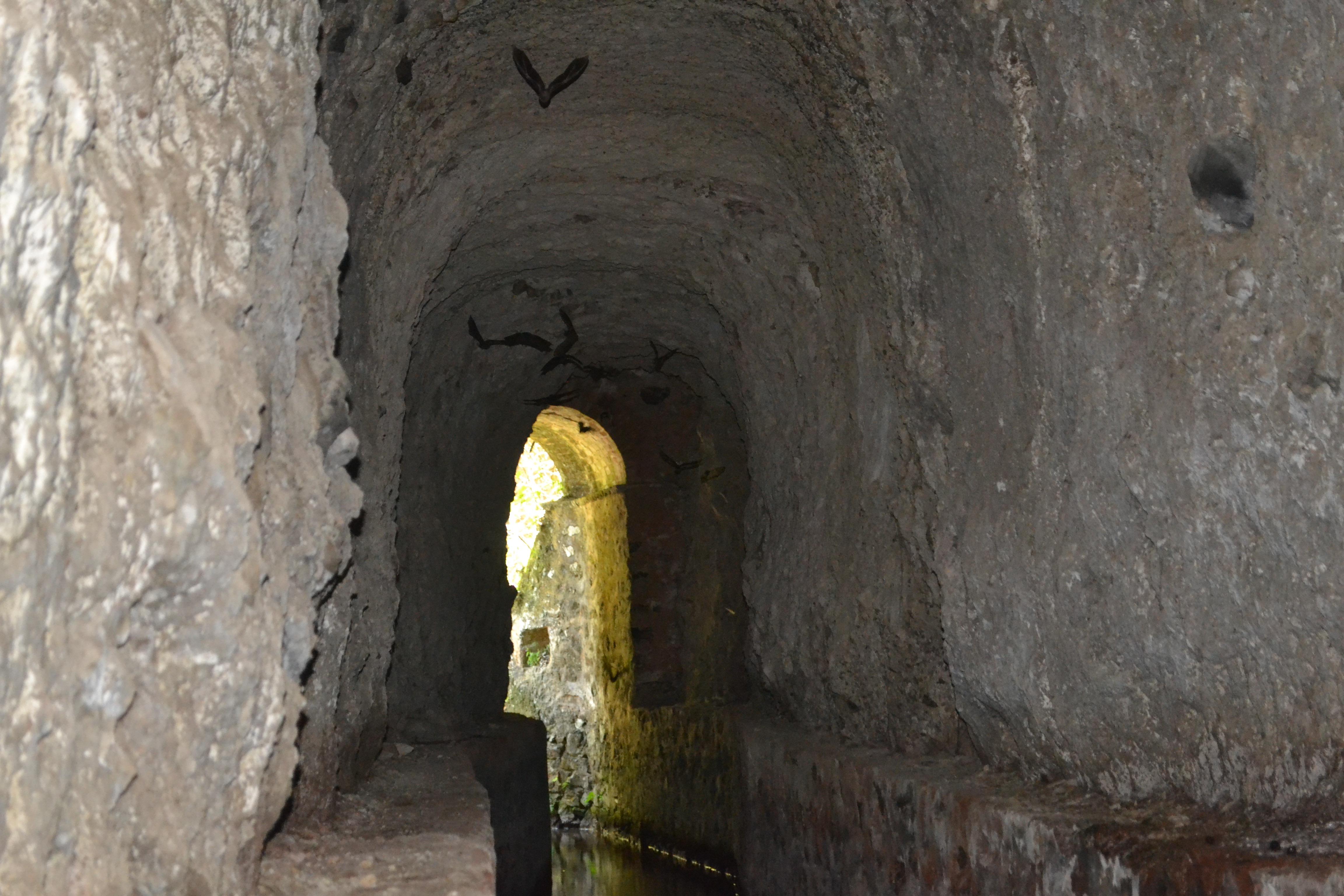 acueducto en la barranca de Aguacatitla