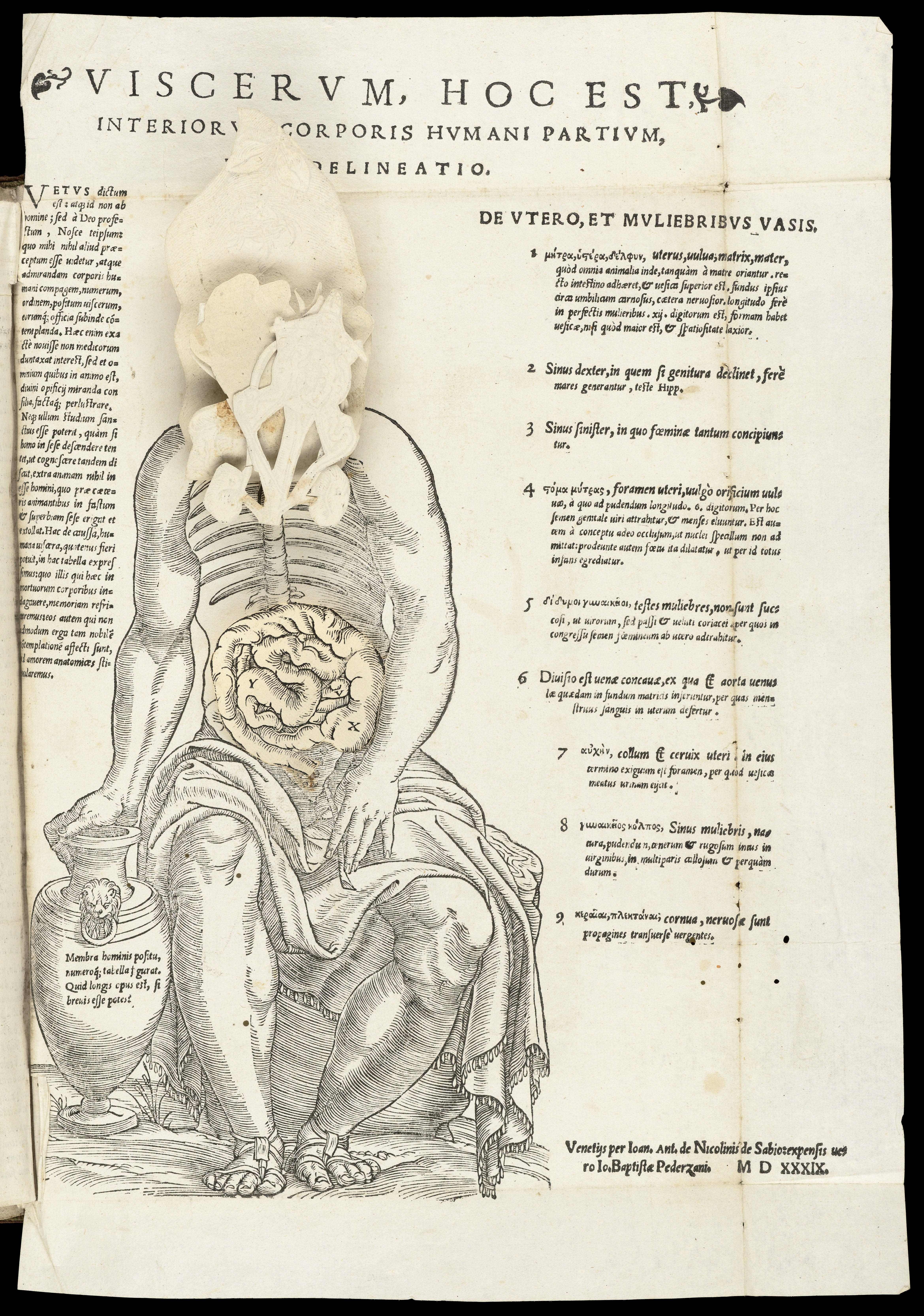 corporis uteri wikipedia