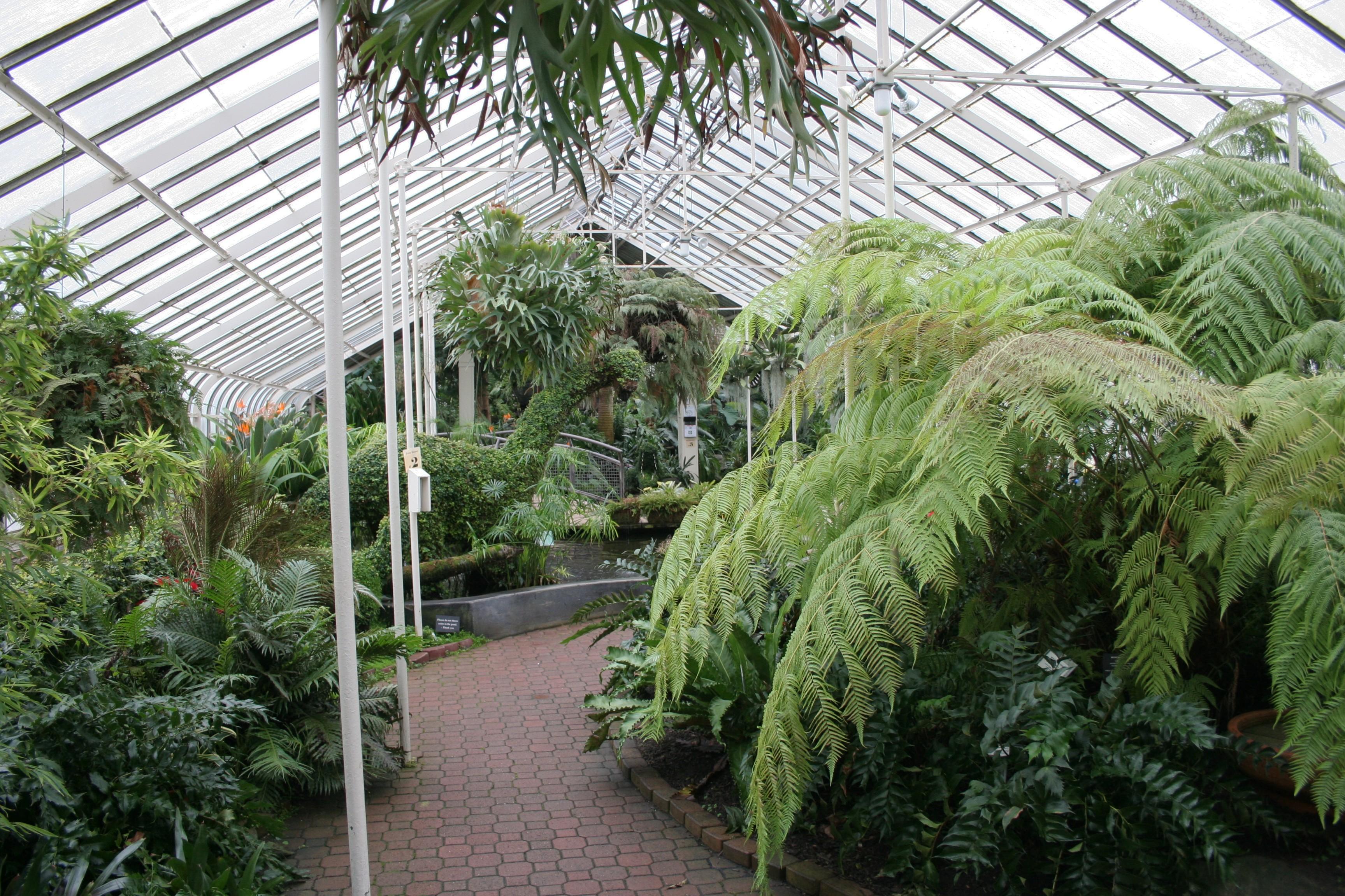 Botanical Garden Buffalo Botanical Garden Buffalo New