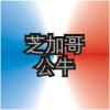 CHI Logo ZhWN.png