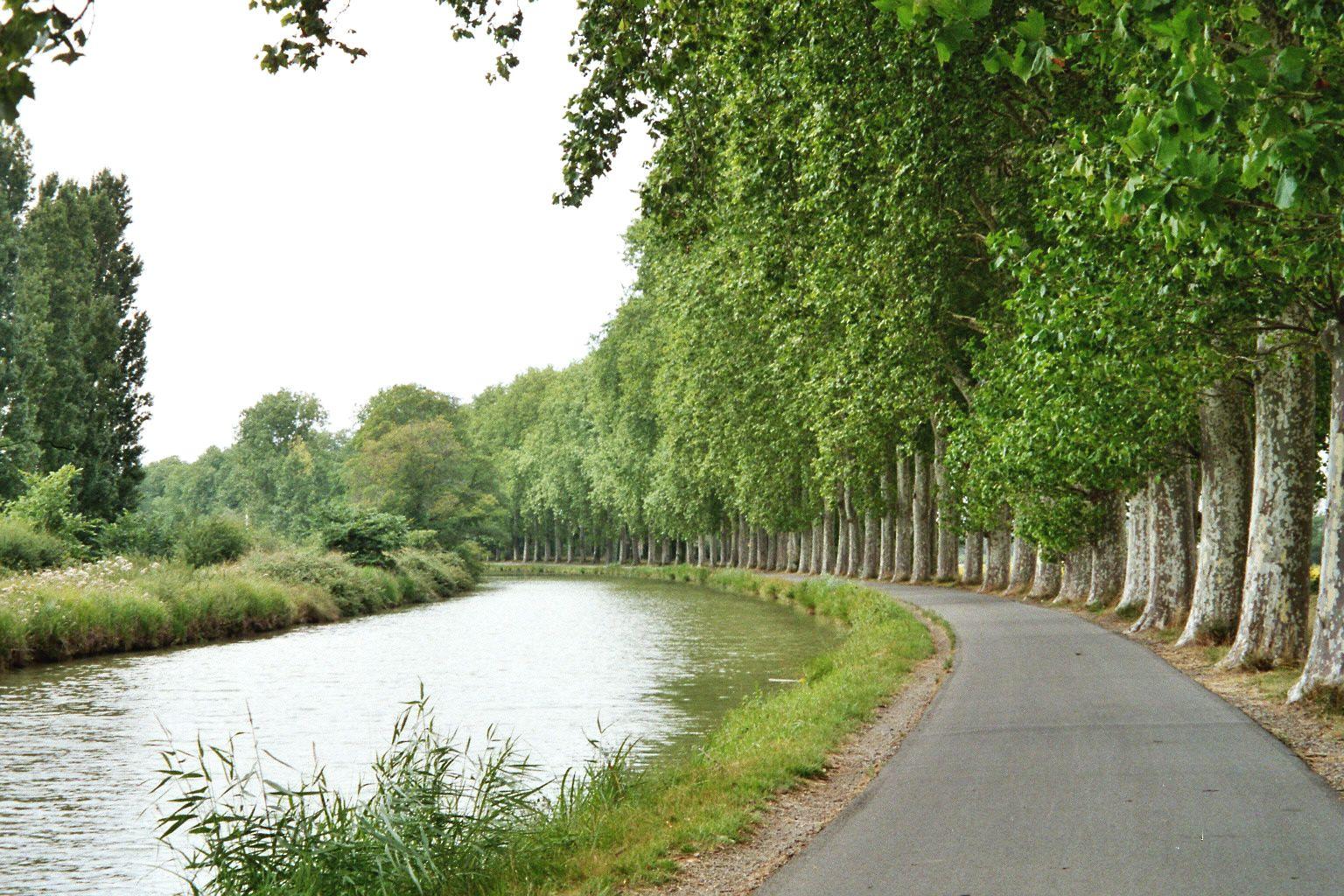 Fichier:Canal du Midi, juillet 2006 - Courbe.jpg — Wikipédia