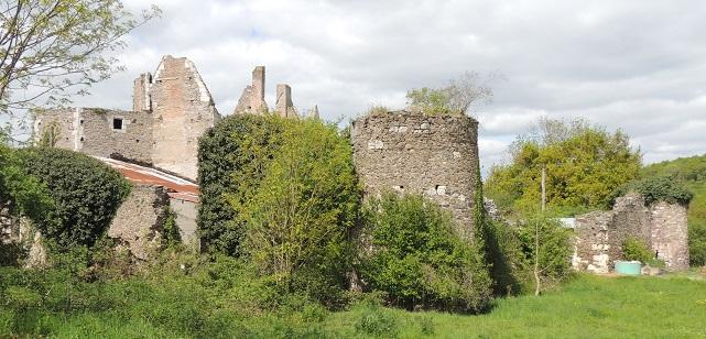 Logis de la Basse-Guerche: enceinte avec 2 tours d'angles rondes à droite et le logis en ruines dépassant au dessus à gauche. Au premier plan arbre à gauche et herbe à droite
