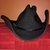 Country Music Cowboy Hat.jpg