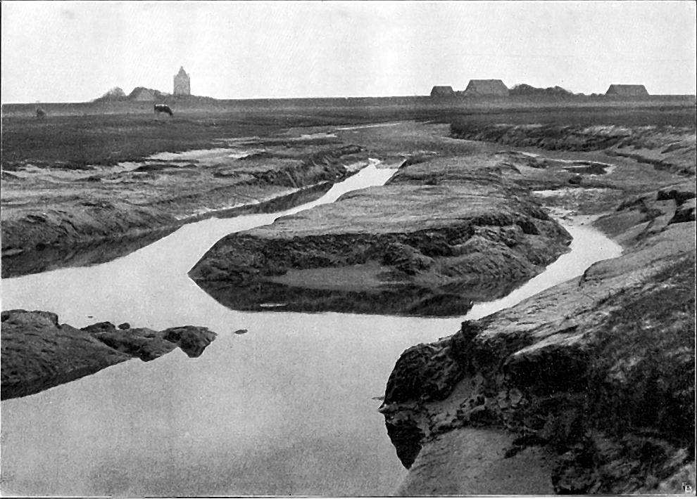 Die Niederelbe 1908 Abb. 117. Prielverzweigung auf Neuwerk