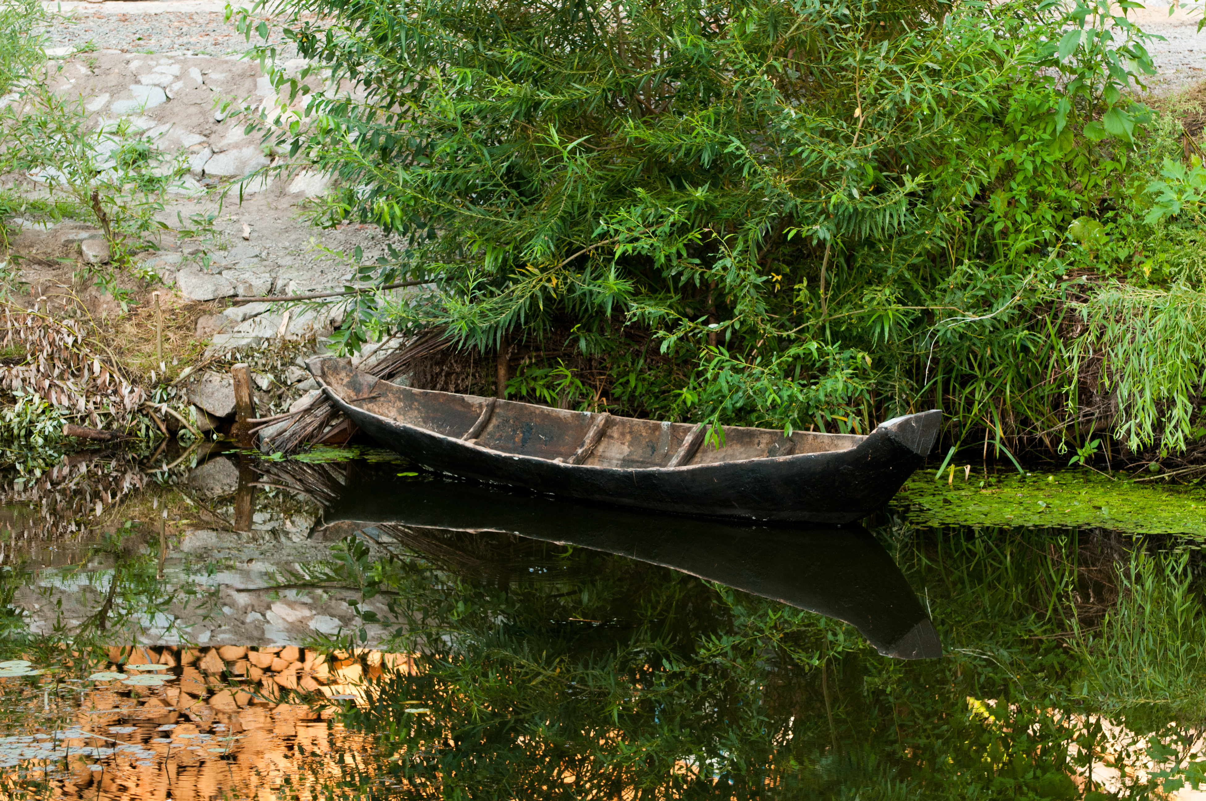 Where to get Build a dugout canoe | Using the plan