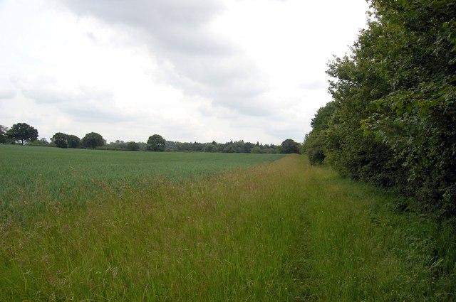 Footpath near Hanningfield Reservoir (3) - geograph.org.uk - 1341651