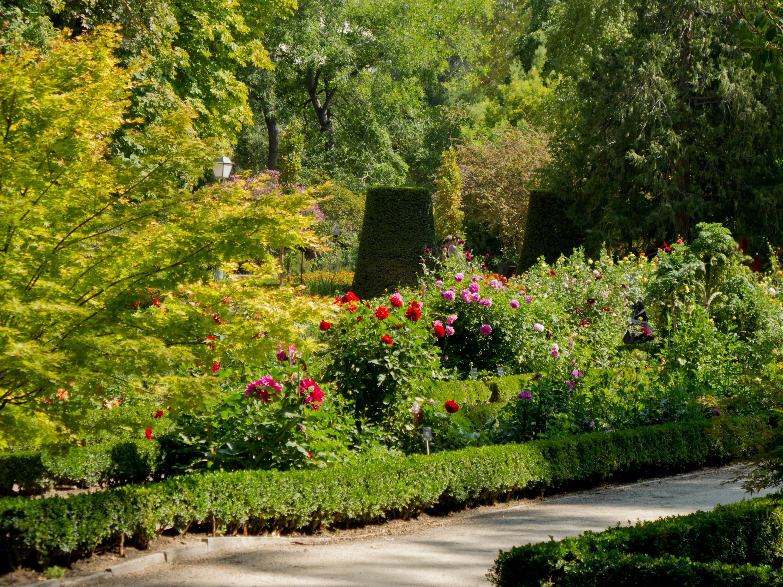 Jardin botanico gallery for Jardin botanico madrid conciertos