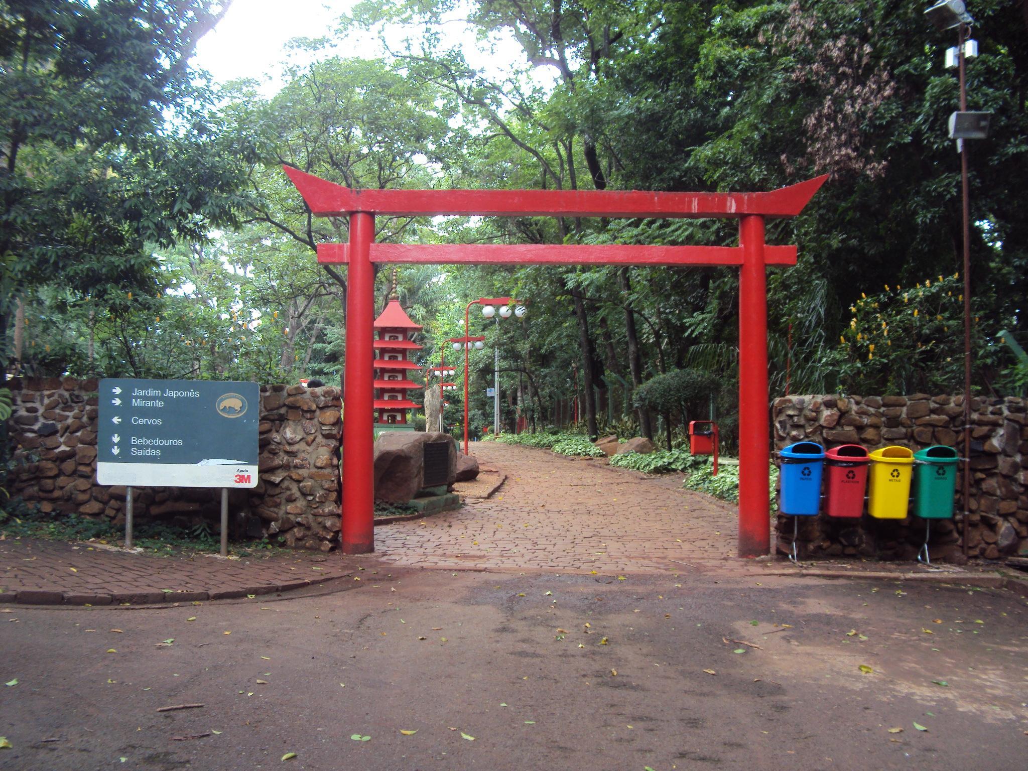 plantas do jardim japones