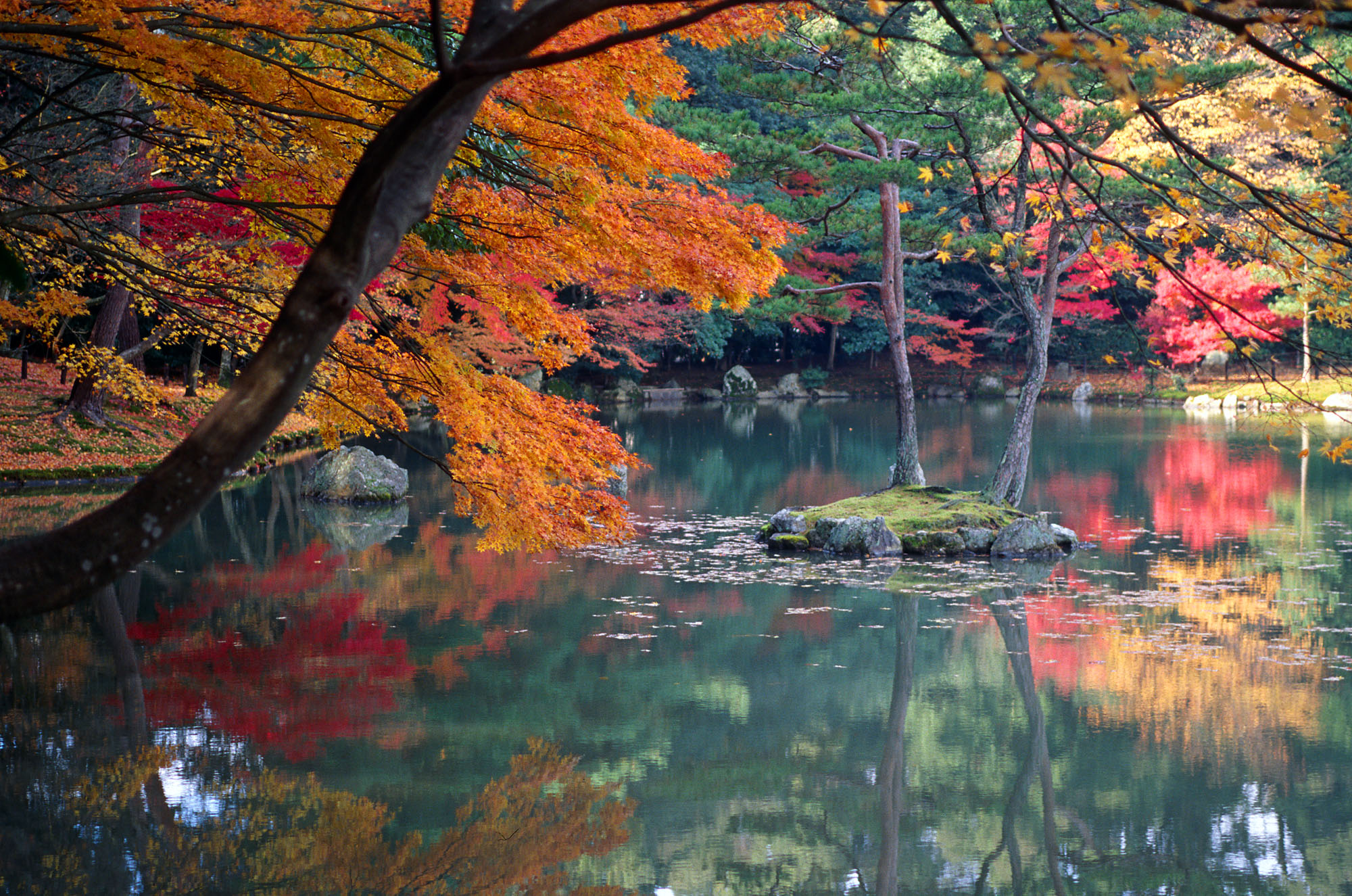 http://upload.wikimedia.org/wikipedia/commons/5/50/KyotoAutumn.jpg