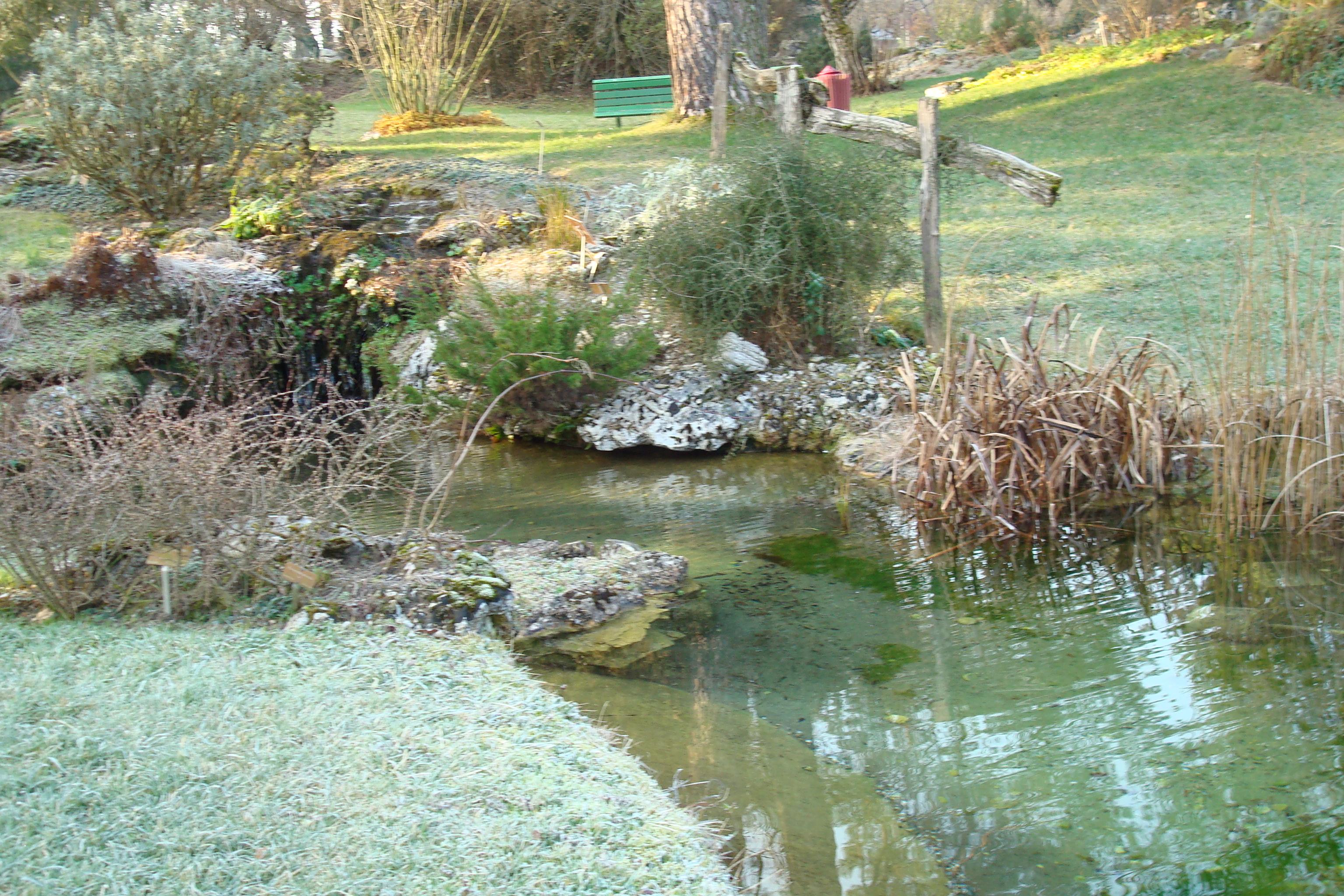 file le jardin botanique de gen ve en hivers 02 jpg