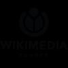 Mini visuel wiki.png