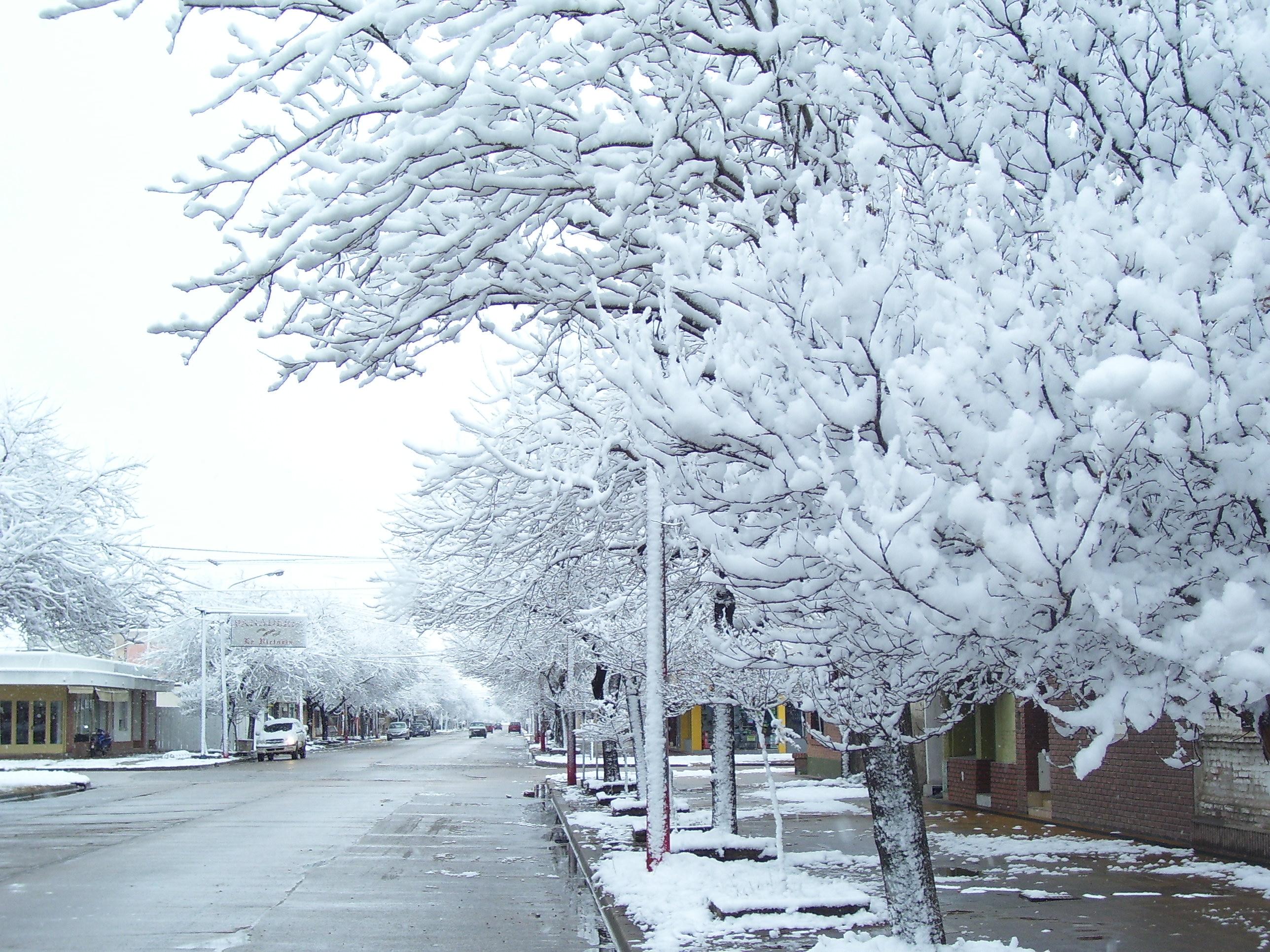 File:Nieve LaCarlota.jpg - Wikipedia