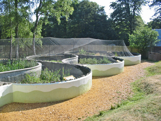 Reptile pods Reptile centre New Forest Hampshire - geograph.org.uk - 218516
