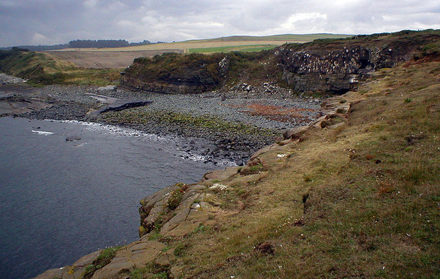 Swine Den from Cullernose Point - geograph.org.uk - 226996