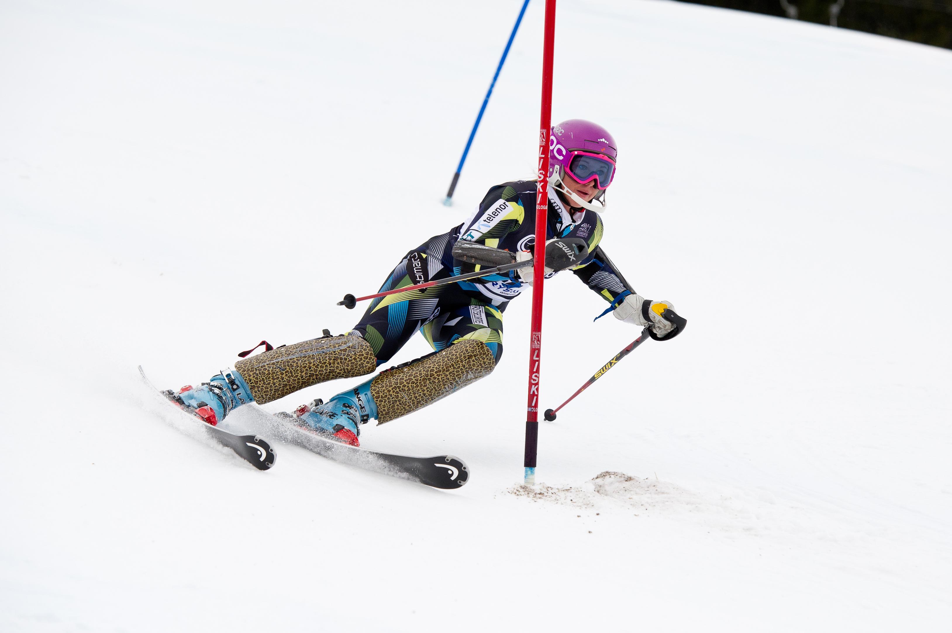 Ski Equipment: Alpine Ski Equipment