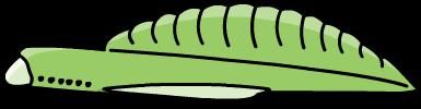 Yunnanozoon