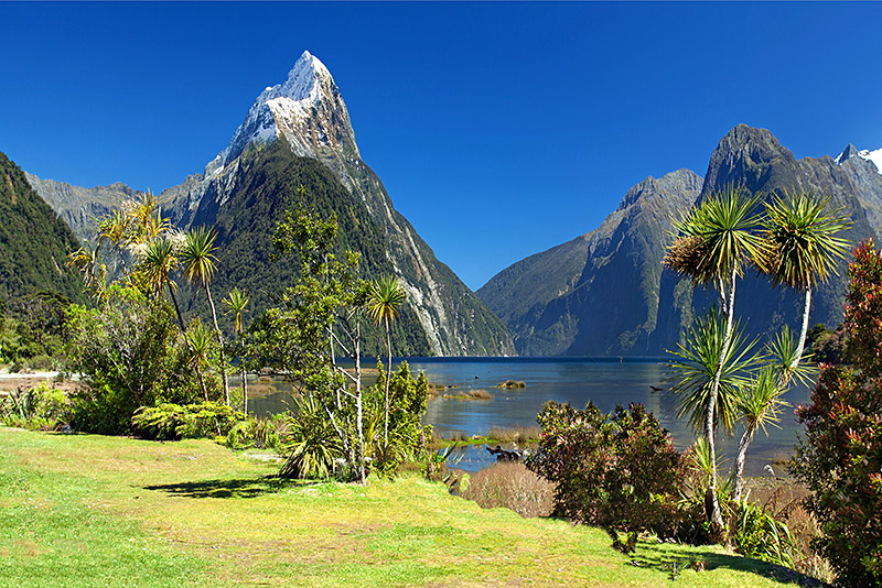 Tourism in new zealand wikipedia for Landscape jobs nz