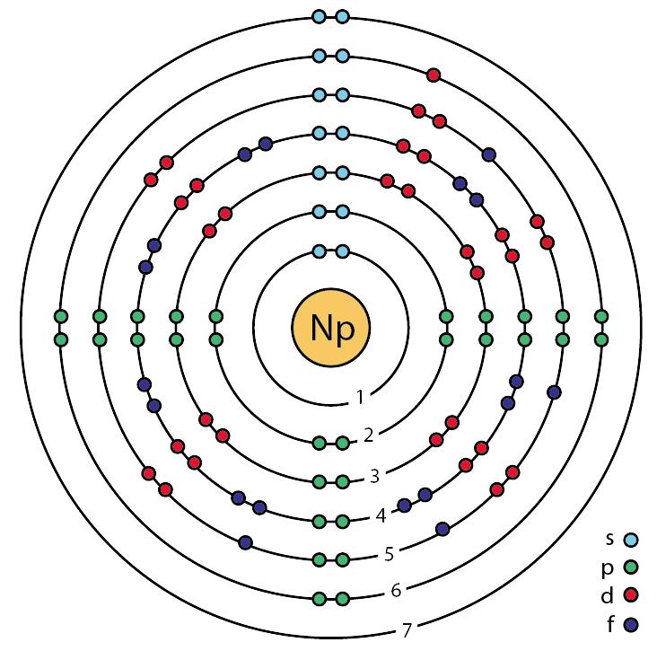 File93 Neptunium Np Enhanced Bohr Modelg Wikimedia Commons