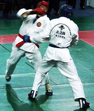 ARB (martial art) - Wikipedia
