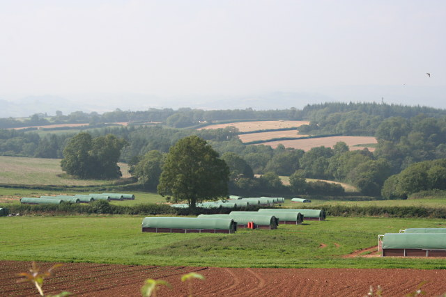 File:Across the Valley - geograph.org.uk - 970591.jpg