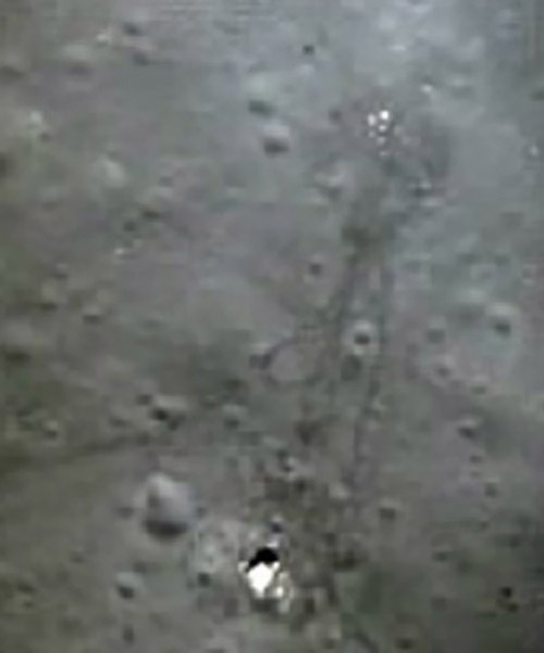 Apollo15_ascentphoto.jpg