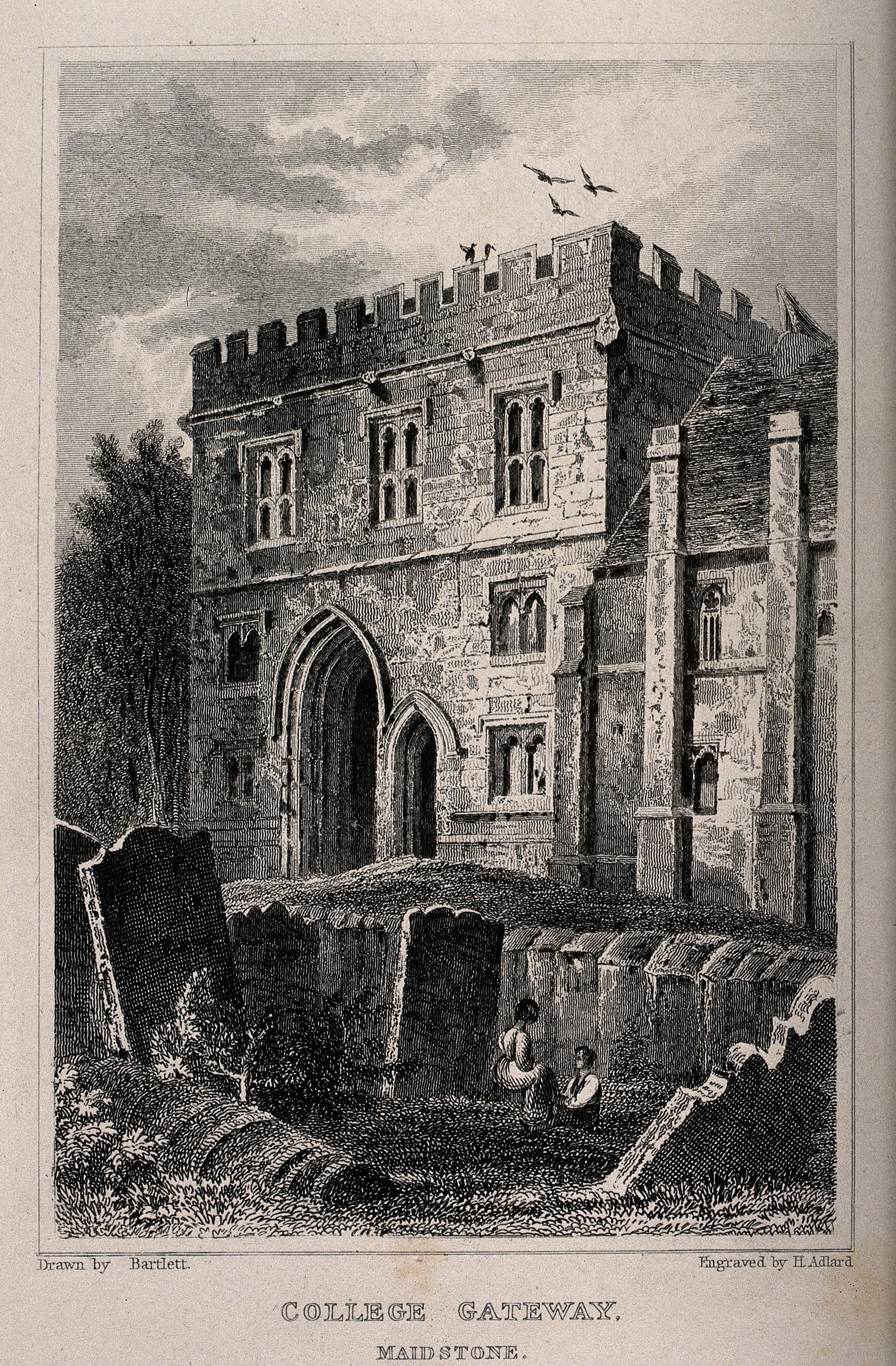 Adlar file:college gateway, maidstone, kent. line engravingh