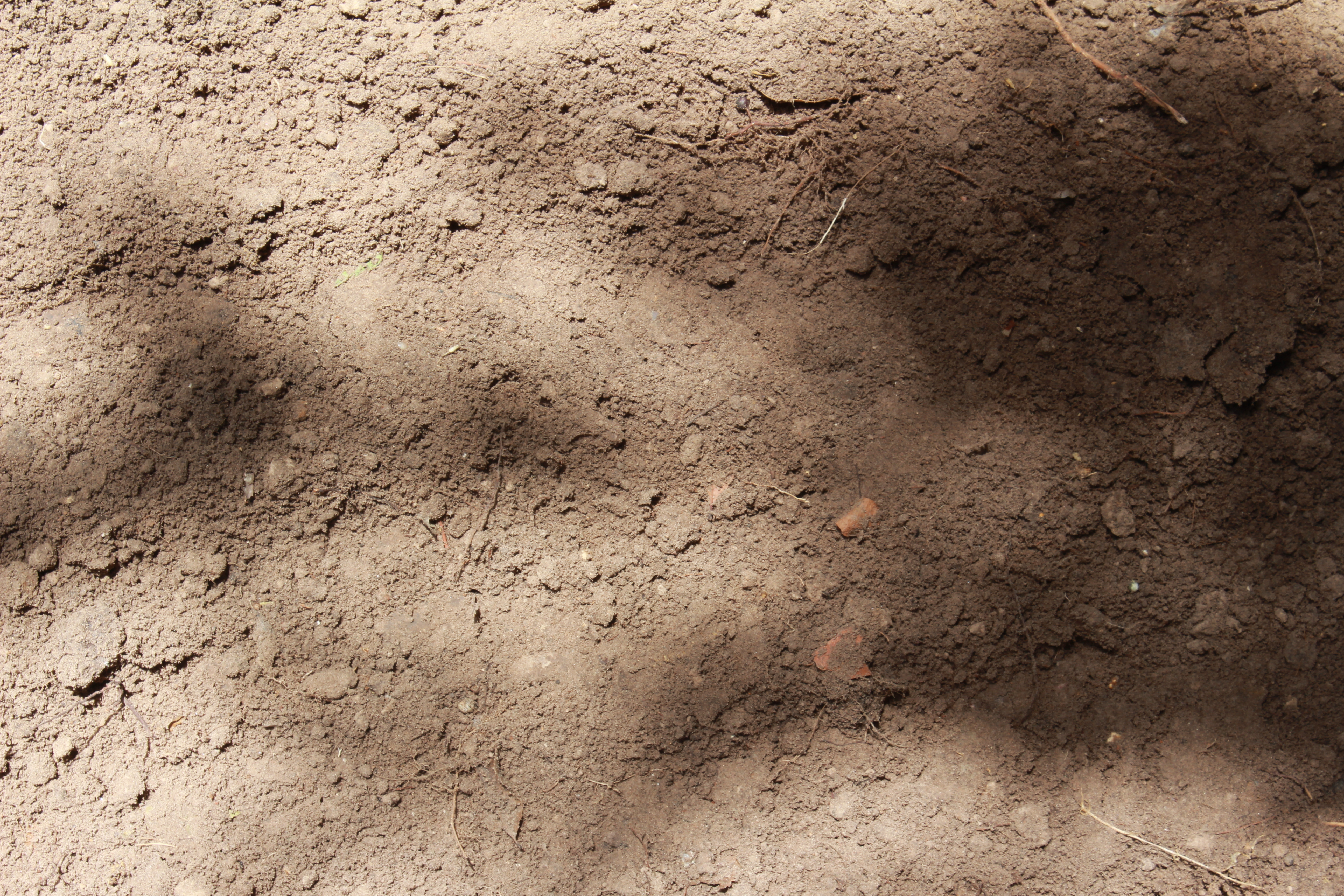 File:Dirt and Mud 001 - Loose Dirt.jpg - Wikimedia Commons
