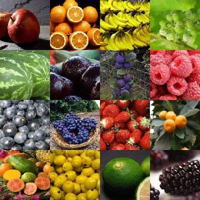 Les fruits du monde