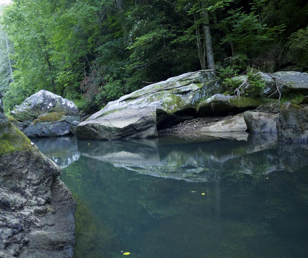 Green river north carolina wikipedia for Freshwater fishing in north carolina