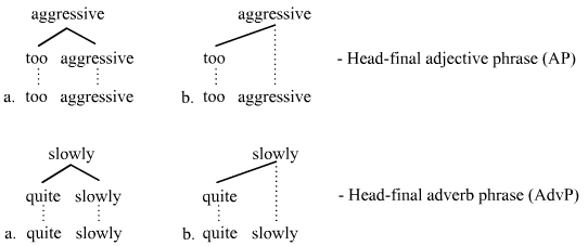scientific word for head
