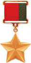 Hero of Belarus medal official drawing.jpg