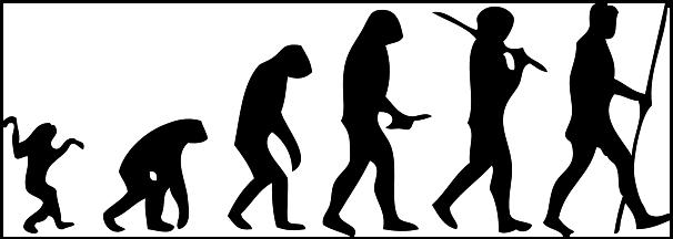 Human-evolution-man
