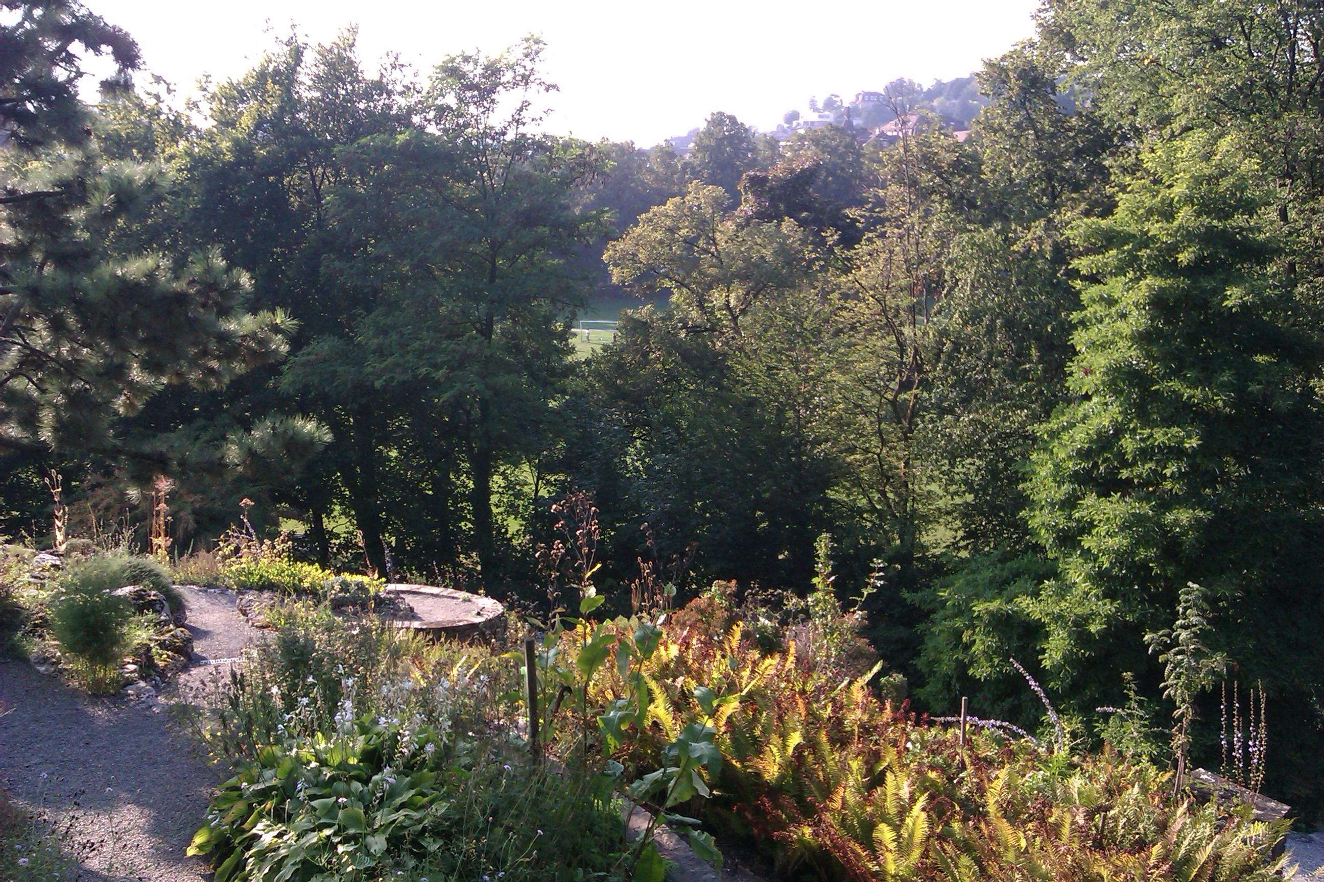 jardin botanique cantonal lausanne. Black Bedroom Furniture Sets. Home Design Ideas