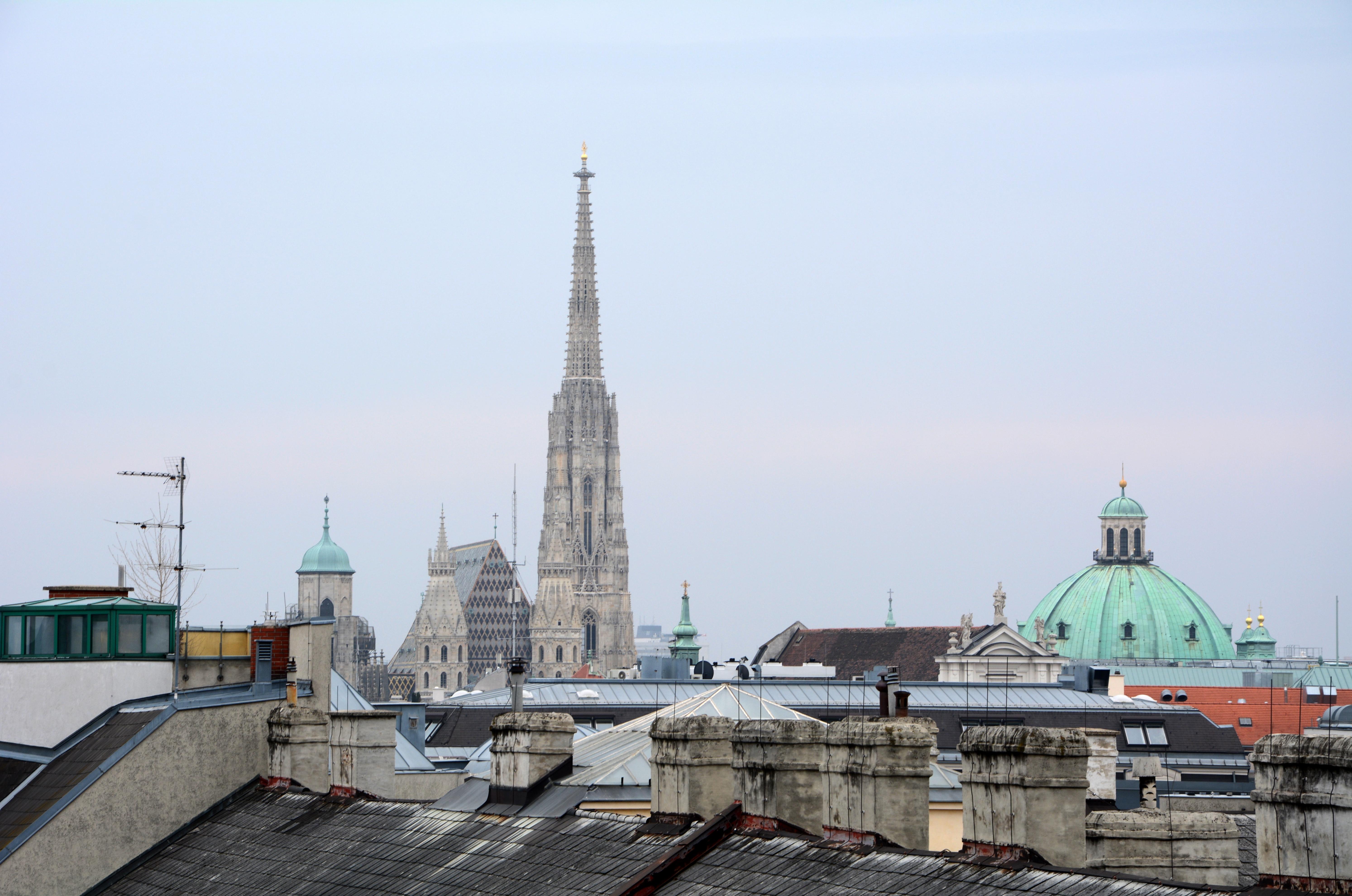 Juridicum Dächer Wien.jpg