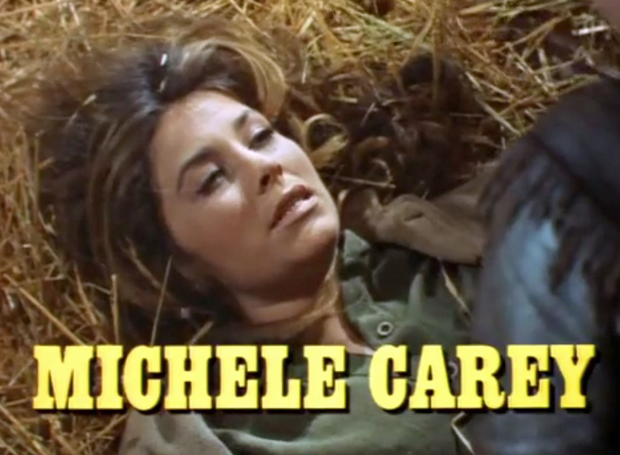 Michele Carey dieulois
