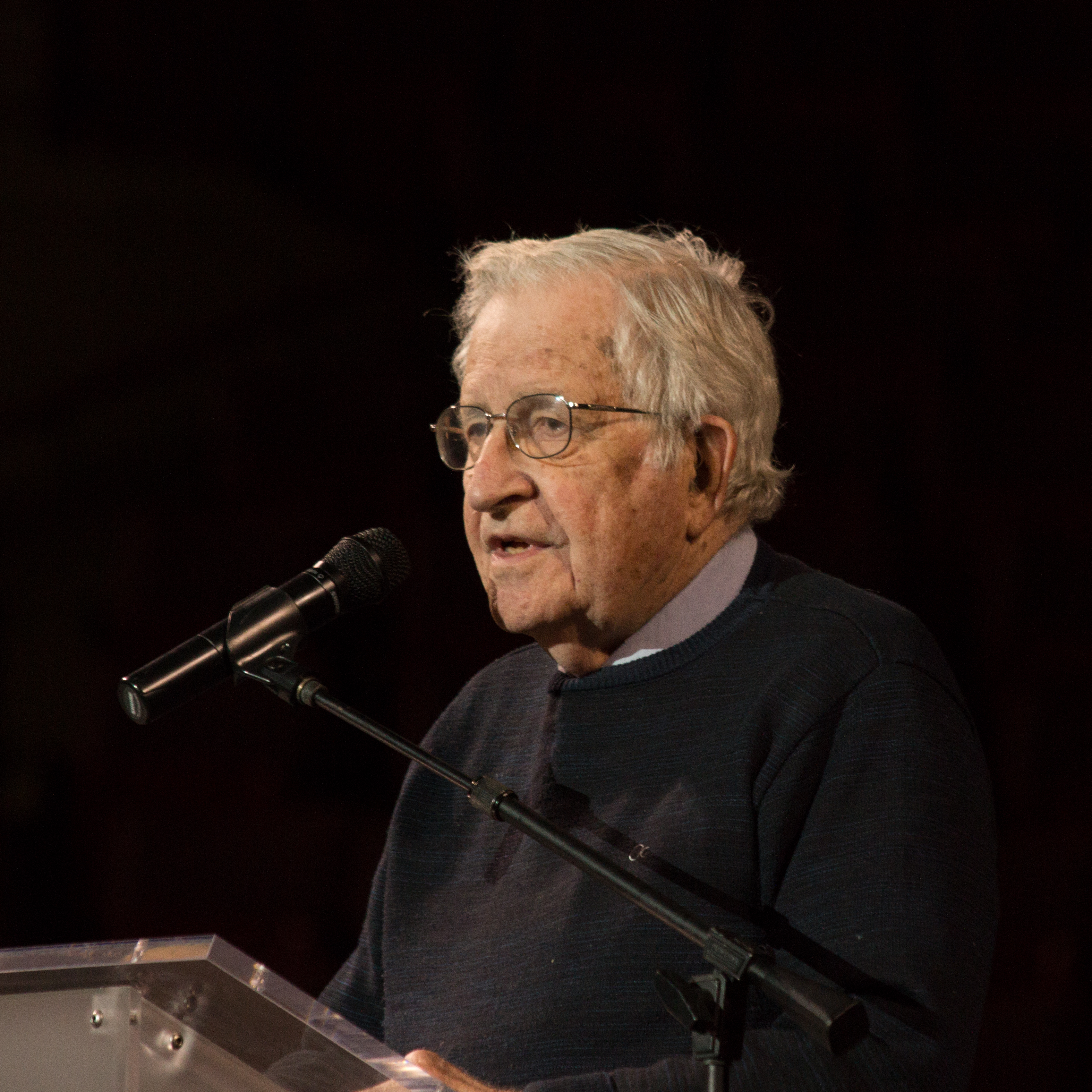 Noam Chomsky photo #100917, Noam Chomsky image