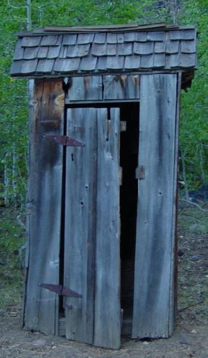 English: Outhouse in Woodland
