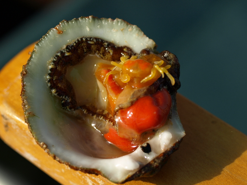 Oyster Crab