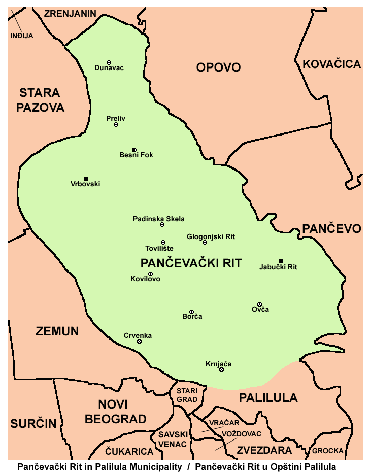 padinska skela mapa Pančevački Rit   Wikipedia padinska skela mapa