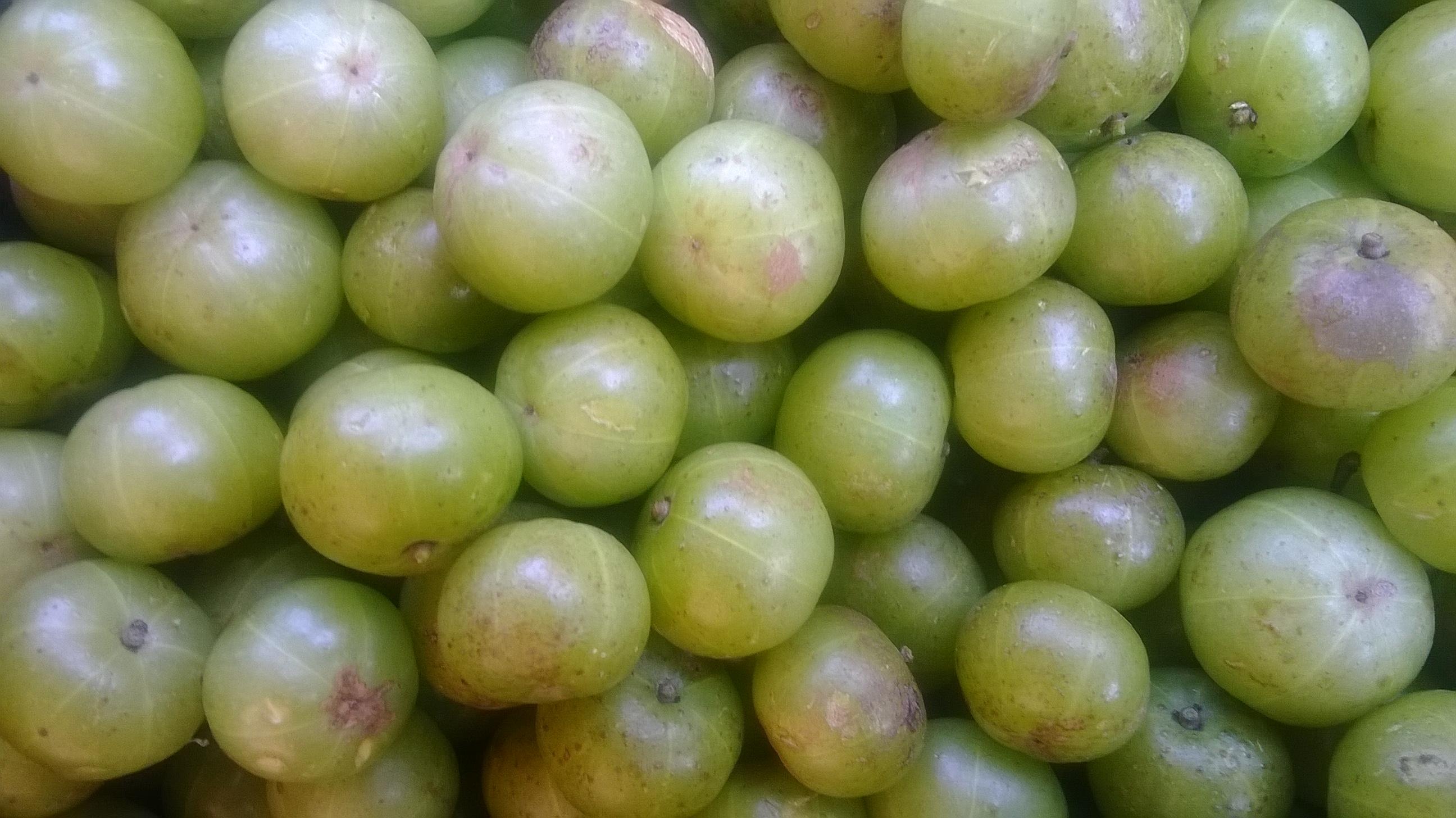 Phyllanthus emblica fruit 02.jpg