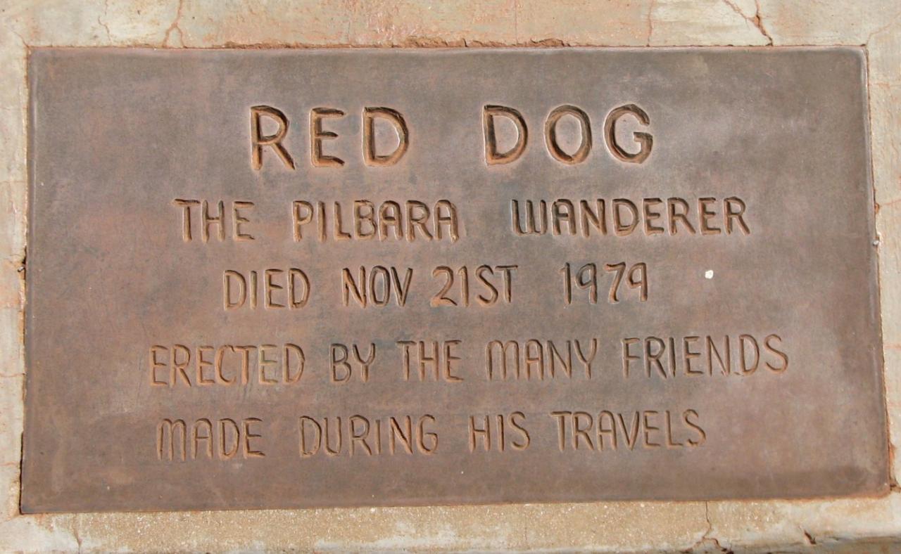Description red dog the pilbara wanderer notice