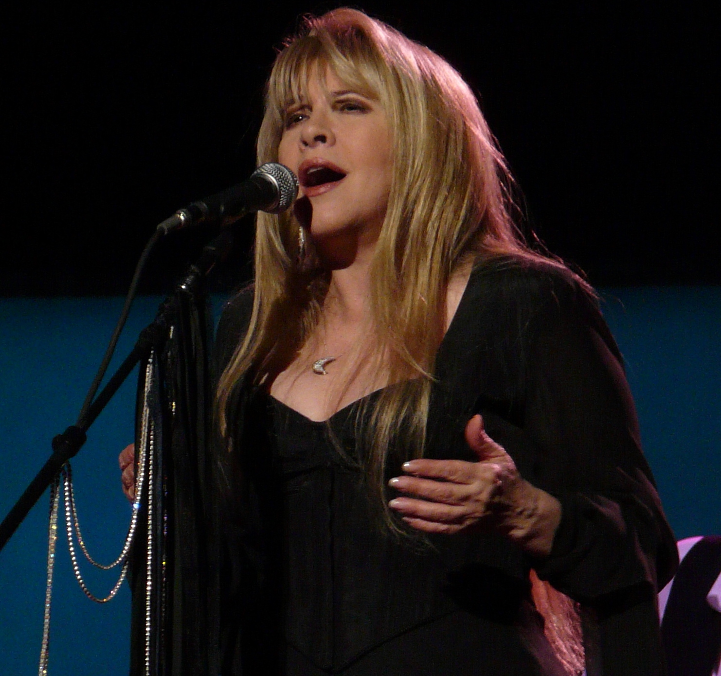 Stevie Nicks, 2009; image by Matt Becker