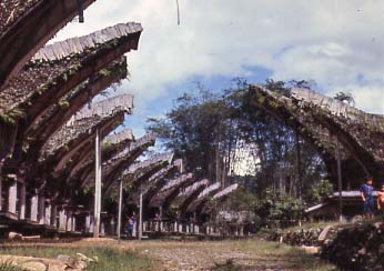 Vernacular Architecture on Indonesian Architecture