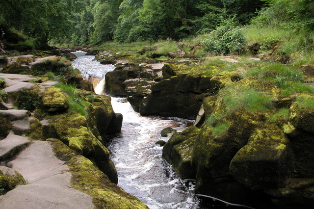 http://upload.wikimedia.org/wikipedia/commons/5/51/The_Strid_-_geograph.org.uk_-_287365.jpg