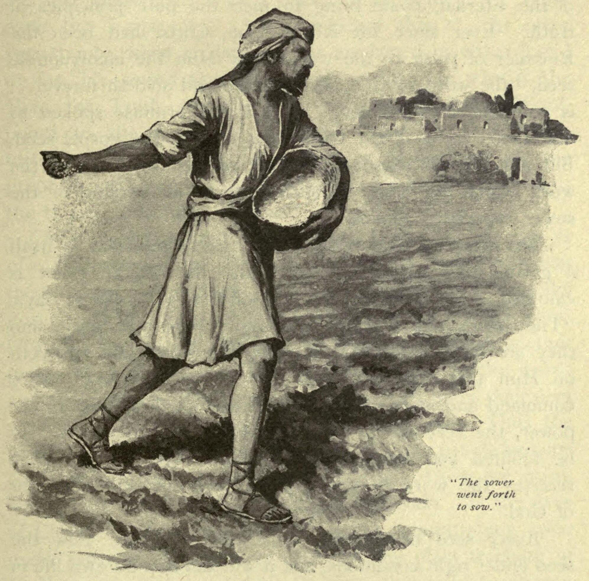 File:The sower went forth to sow.jpg