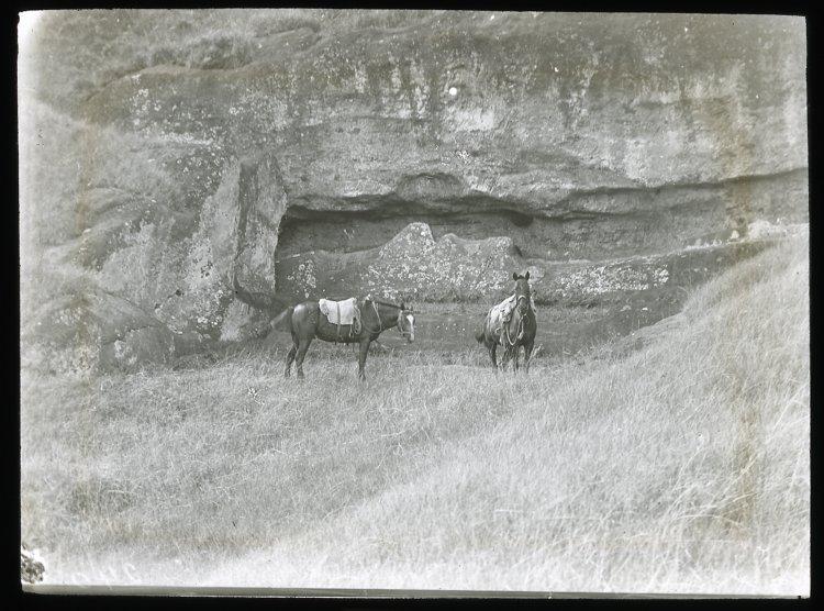 File:Two horses next to unfinished moai, Rano Raraku, Oc,G.T.1646, Mana Expedition to Easter Island, British Museum.jpg