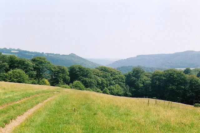 Withypoole and Hawkridge, path leading to Marsh Bridge - geograph.org.uk - 89033