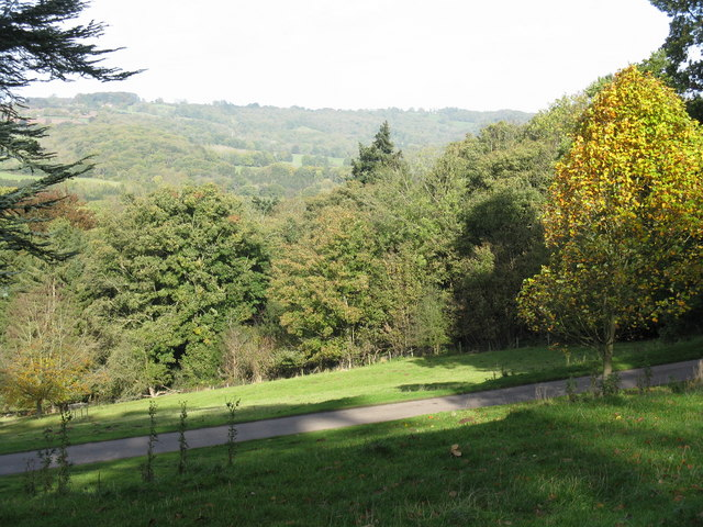 Wooded hills of the Brockhampton estate - geograph.org.uk - 1019146